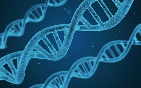 Microsoft is creating the cloud based data storage system on the basis of DNA