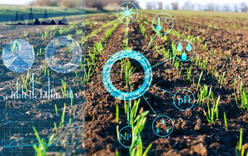 5 Potential Applications of Blockchain in Agriculture