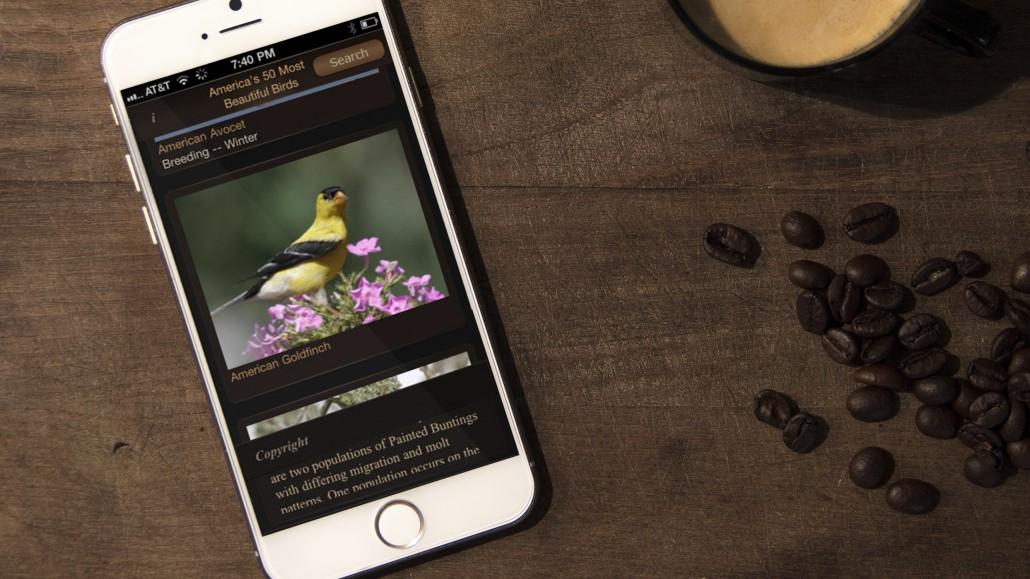 Premium Mockups - iPhone 62